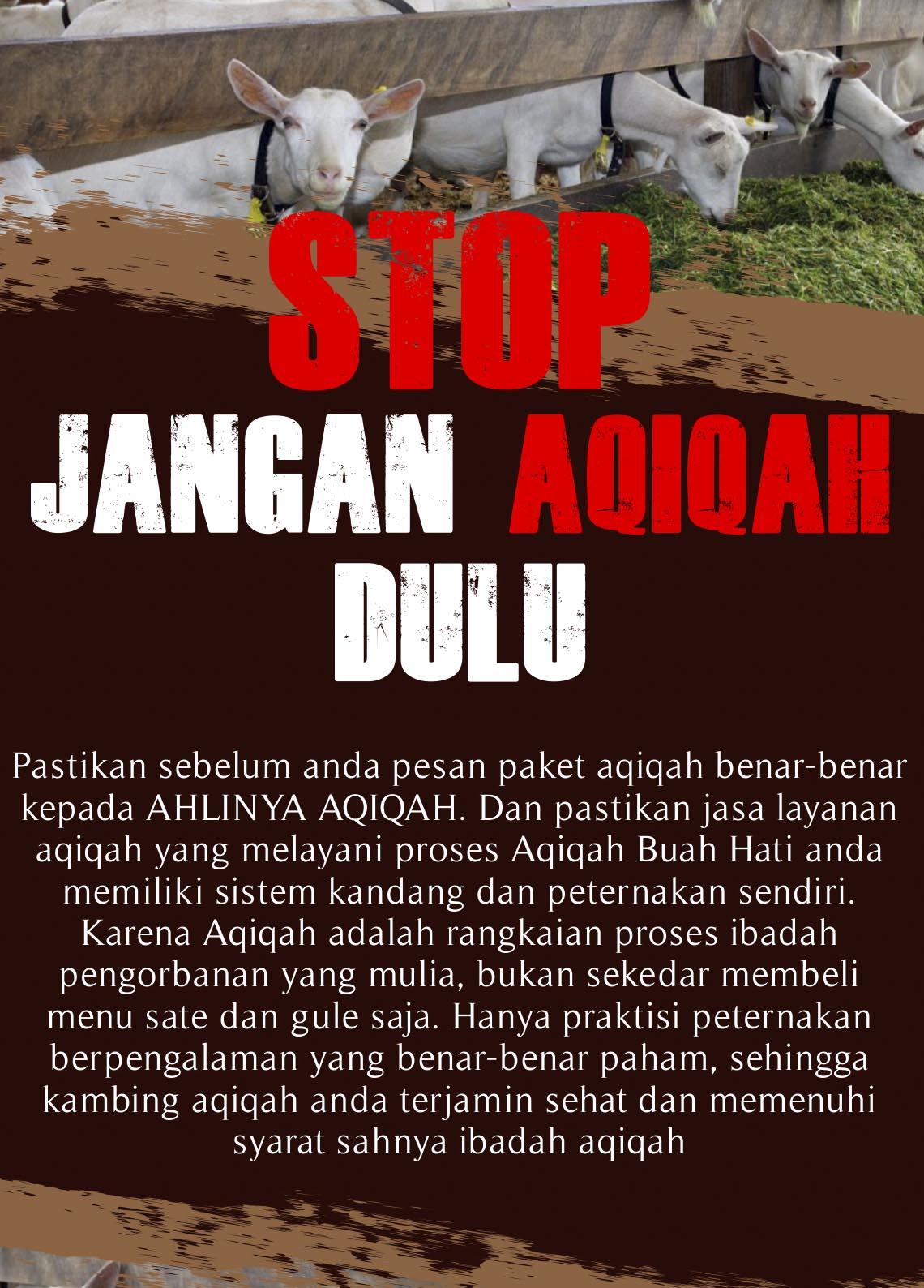 Stop-GT
